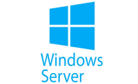 Runs in Windows Server